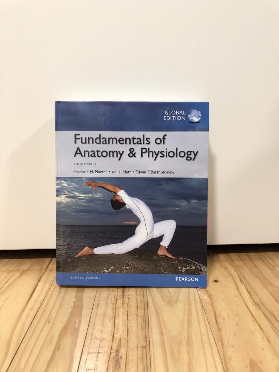 Fundamentals of Anatomy and Physiology,(Hardback) Global ...