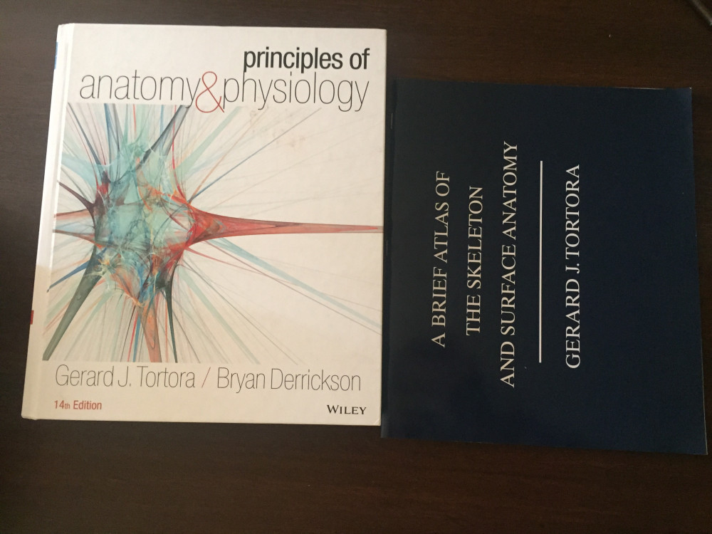 Principles of Anatomy and Physiology – StudentVIP Textbooks