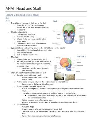 Anatomy: Viscera - Head & Skull Notes (H1) – StudentVIP Notes