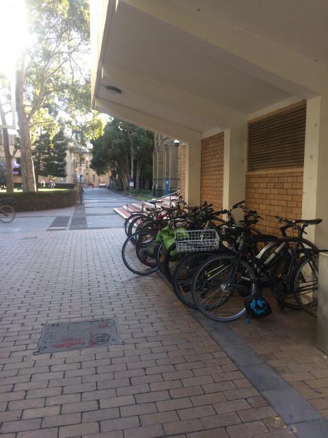 Bike racks opposite MSD