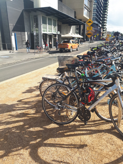 Look at all those bikes!!